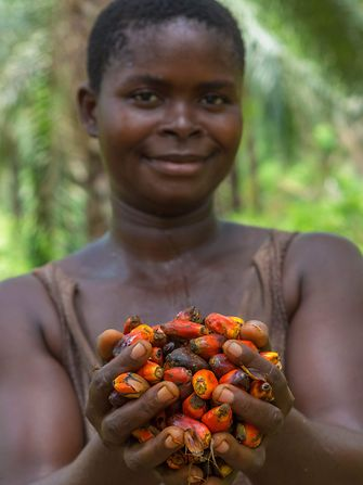 Women with palm oil fruits in her hands